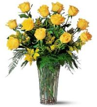 Dozen Yellow Roses and filler