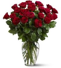 Two Dozen Red Roses - Platinum Collection